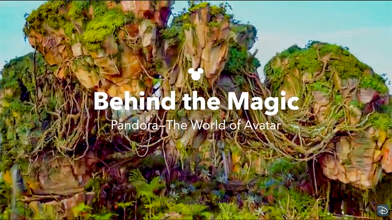 Behind the Magic Pandora