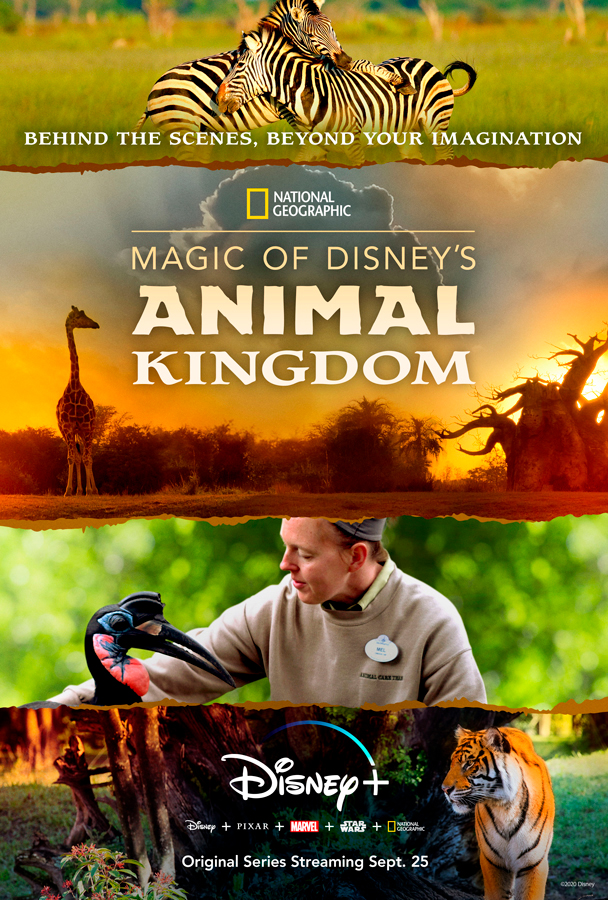 Poster Magic of Disney Animal Kingdom